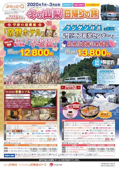 【2020年1月~3月出発】ワイドビューふじかわ号で行く 冬の山梨 日帰りの旅
